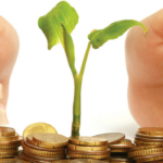 Photo: Small seedling surrounded by gold coins and protected by a pair of hands.